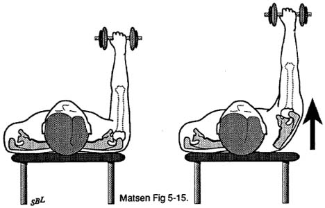 Fig. 4 - Home Exercises for the Unstable Shoulder. Scapular Muscle Exercise. Press Plus