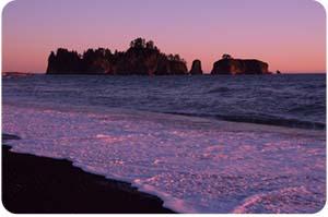 Ocean - Olympic National Park
